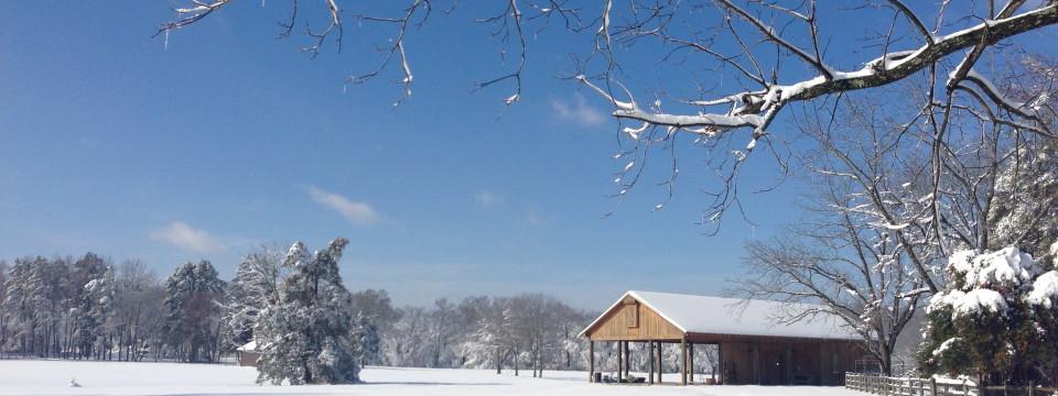 The Barn at Rafter4C